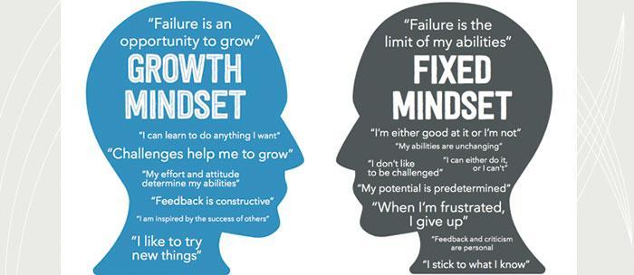 Myers-Briggs vs Mindset by Matthew Scharnitzky - Infogram