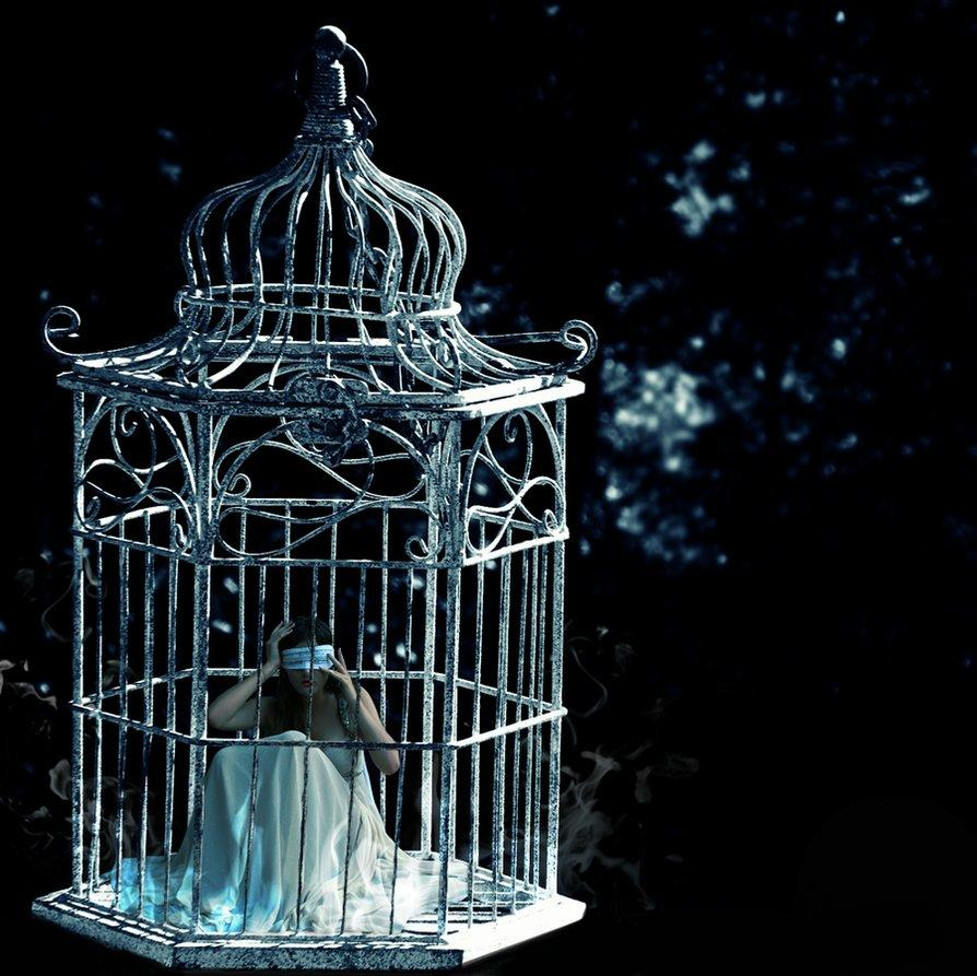 cage of butterflies